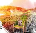 Passiflore au salon Lire en Tursan à Geaune les samedi 10 et dimanche 11 octobre